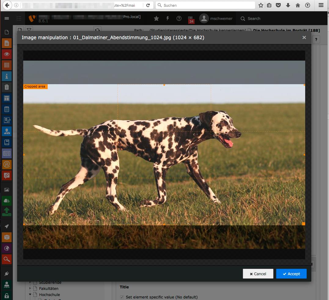 Bug #80090: Image Editor
